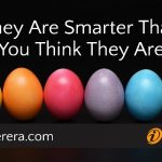 They Are Smarter Than You Think They Are