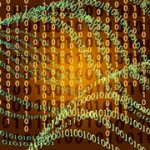 The Big Deal About Big Data